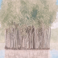 Bamboo - acrilico su tela / acrylic on canvas, cm 70x100  (1996)