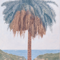 Palm Tree - acrilico su tela / acrylic on canvas, cm 70x100  (2001)